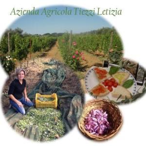 azienda agricola letizia tiezzi fornitori ristorante cantina